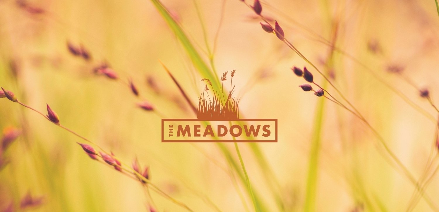 the meadows in orcutt, ca