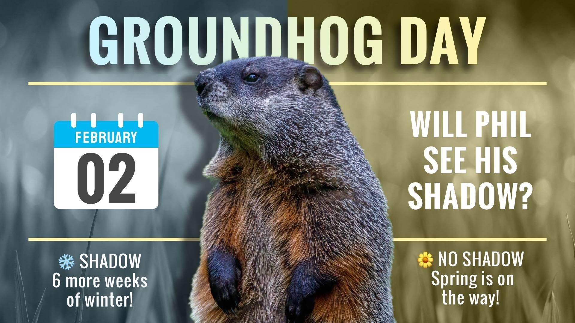Groundhog Day Digital Signage Template