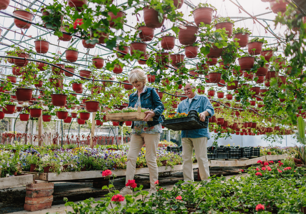 How Indoor Gardens Help Seniors | Rising Star Properties