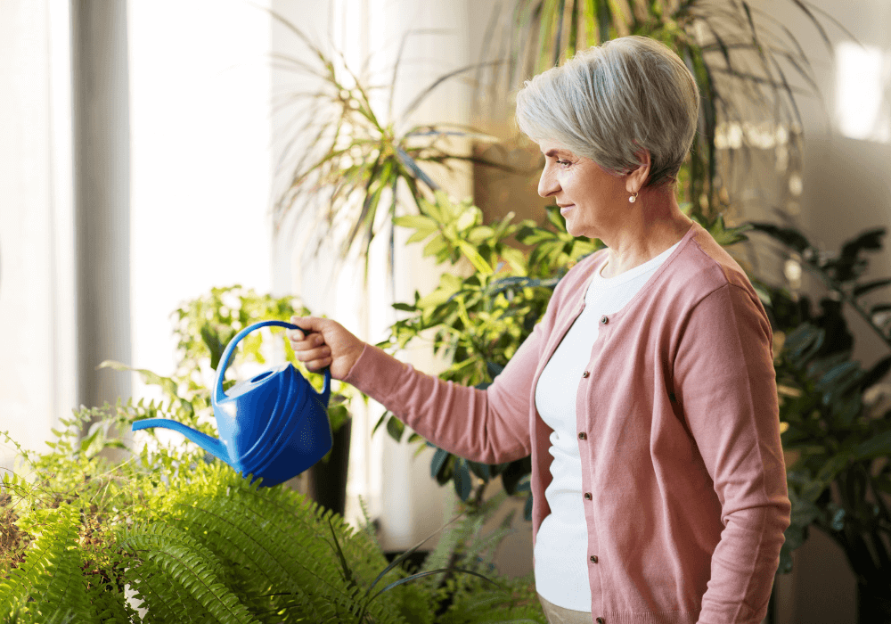 How Houseplants Improve Cognitive Functions in Seniors | Rising Star Properties