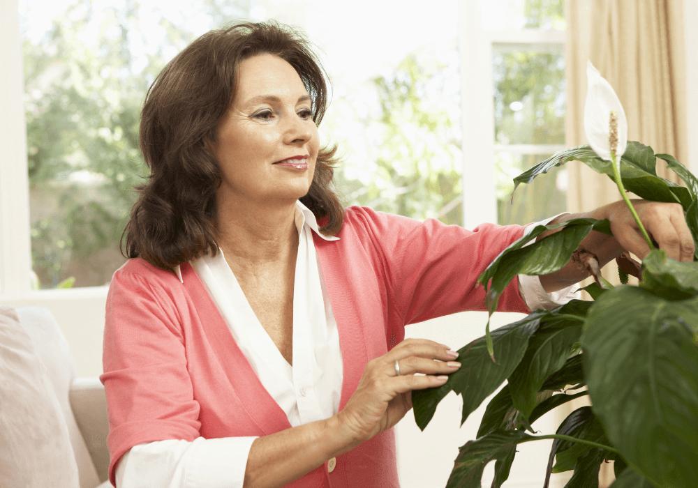 House plant benefits for seniors | Rising Star Properties