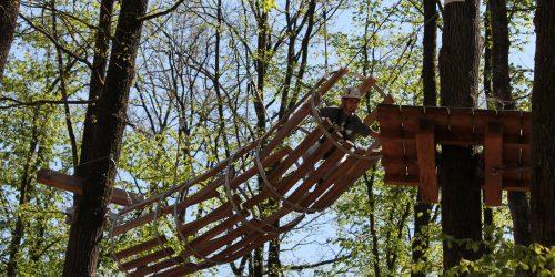 Klimbos houten tunnel