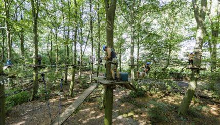 Fun forest klimpark avontuurlijk dagje uit