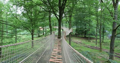 Canopy tour Skanes Djurpark
