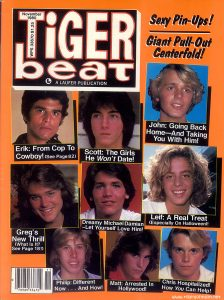 Tiger Beat Vol 17 No 2 Nov 1980 cover