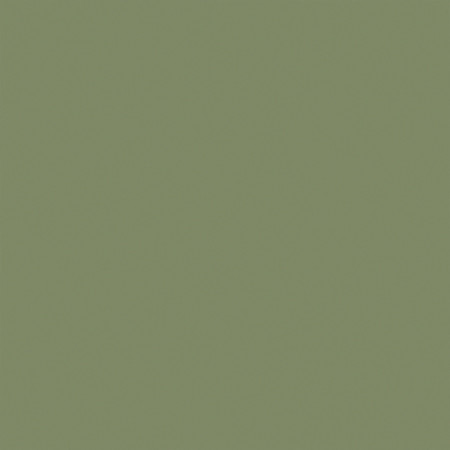 Solid Olive Green