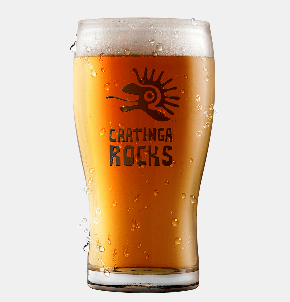 Copo De Vidro Half Pint 295ml Para Cerveja