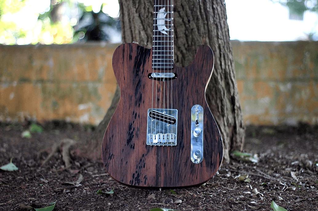 Guitarra Tele Lobo 03 - EcoGuitar