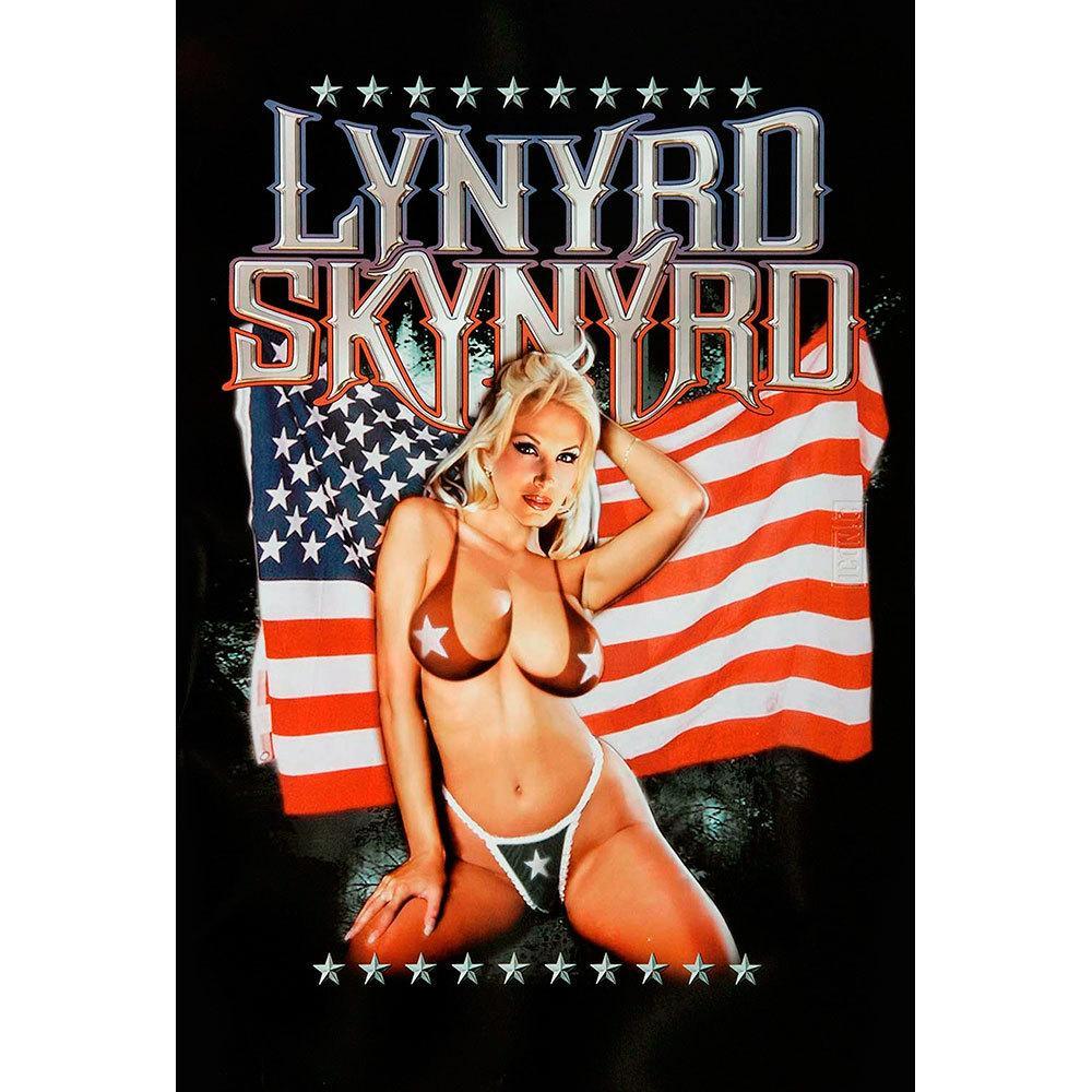 Placa Decorativa Planeta Decor Lynyrd Skynyrd
