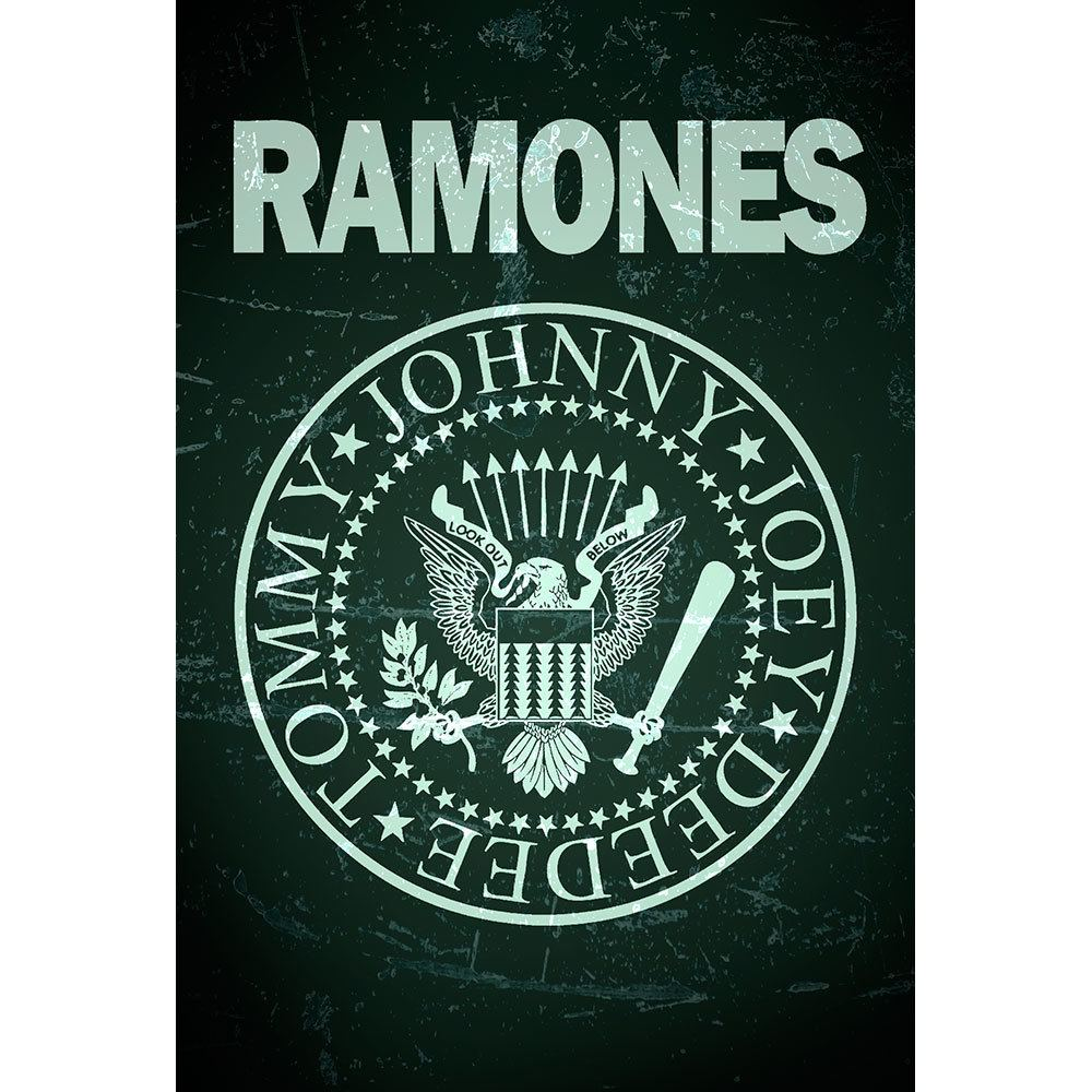 Placa Decorativa Planeta Decor Ramones