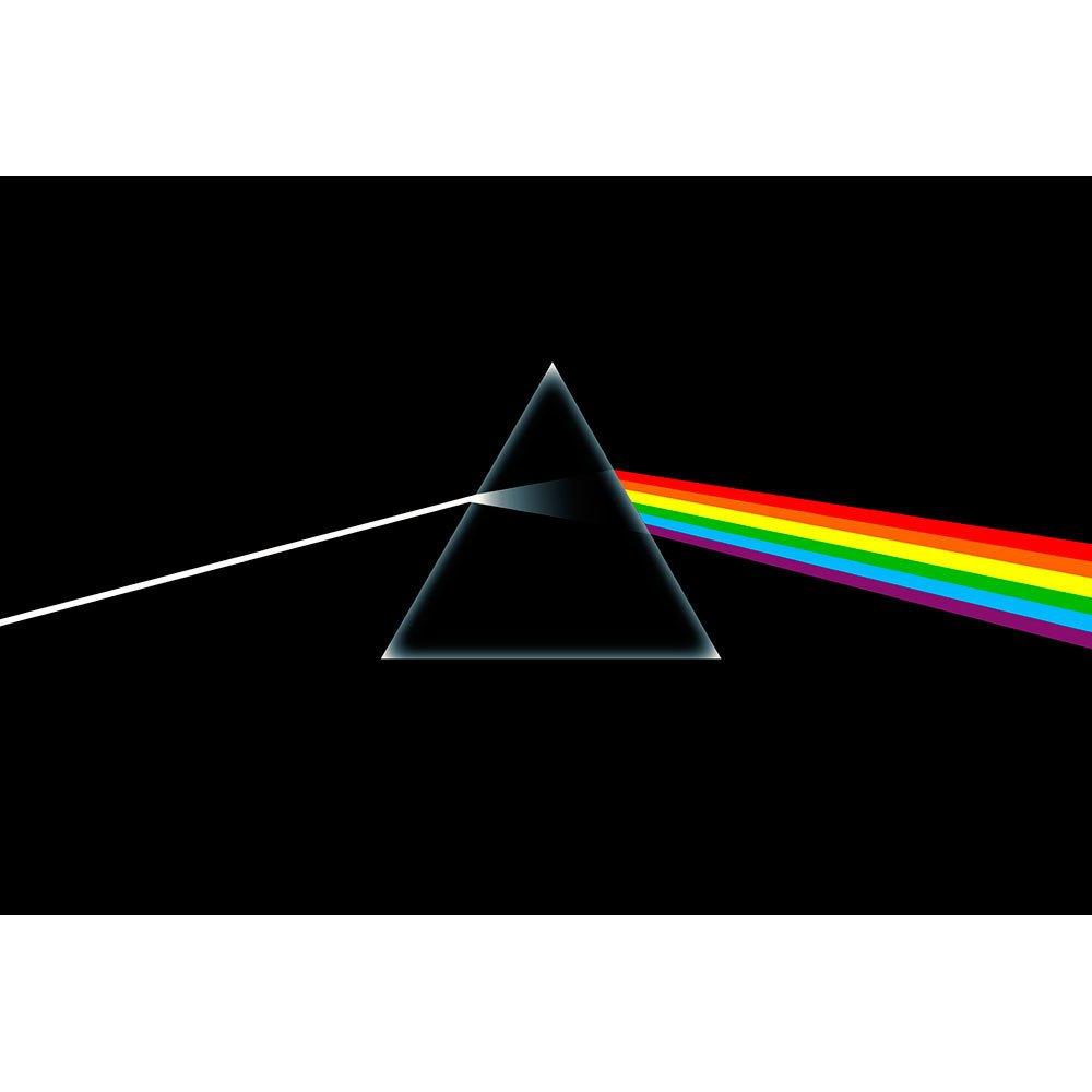 Placa Decorativa Planeta Decor Pink Floyd
