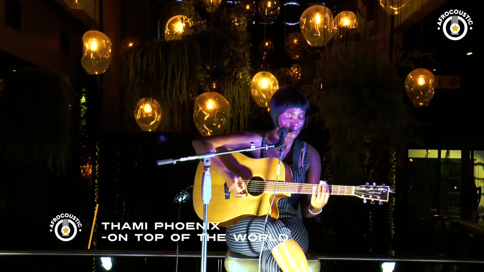 Afrocoustic - Thami Phoenix - On Top Of The World