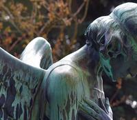 Angels Can't Die by Ashwath Narayanan