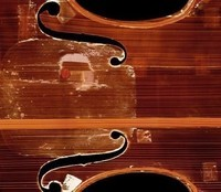 Something About Violins by LeoNation