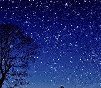 The Dog Star by remosmith17