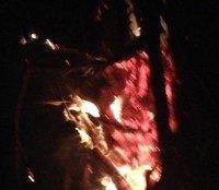 Burn by Truemy Brewer