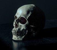Screaming After Death by Amanda Huddleston