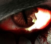 Blood Magic by Domino Finn