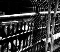 Ascendant: Imprisoned by EnShirushi
