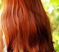 Sunny by BlueEyedGurl