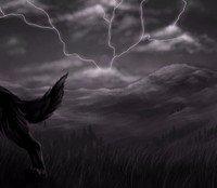 Secret of the Mystic by Jorma McCracken