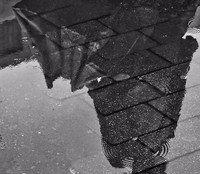 Rain by CommanderPirx