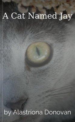 A Cat Named Jay by Alastríona Donovan