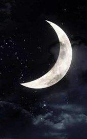 A half moon Book 1  by Sangeetha AS