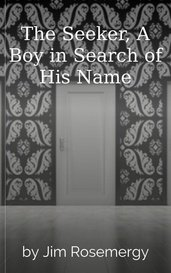 The Seeker, A Boy in Search of His Name by Jim Rosemergy