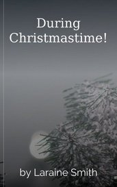 During Christmastime! by Laraine Smith