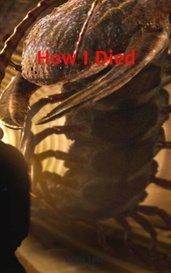 How I Died by Eddie Loud