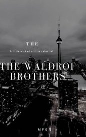 The Waldrof Brothers: Book 1 by Maria Fernanda Gonzalez Najera