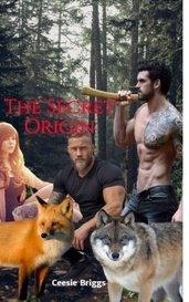 The Secret Origin by Ceesie Briggs