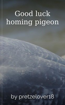 Good luck homing pigeon by J.E Montgomery
