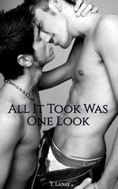 All It Took Was One Look  (Blue Moon Series) (Book 1) [Available on Amazon!] by T. Lanay