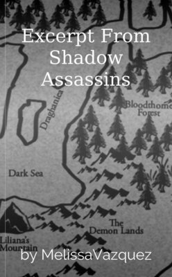 Excerpt From Shadow Assassins by MelissaVazquez