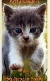 Kitty Wonders by Kitties Rule