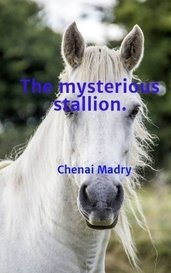 The mysterious stallion. by Chenai Madry