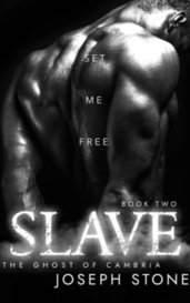 Slave by Joseph Stone