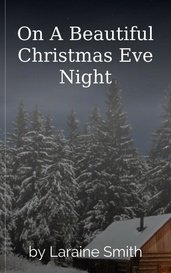 On A Beautiful Christmas Eve Night by Laraine Smith