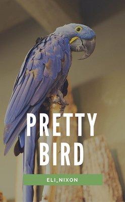Pretty Bird by Eli_Nixon
