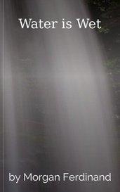 Water is Wet by Morgan Ferdinand