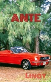 ANTE by Linay
