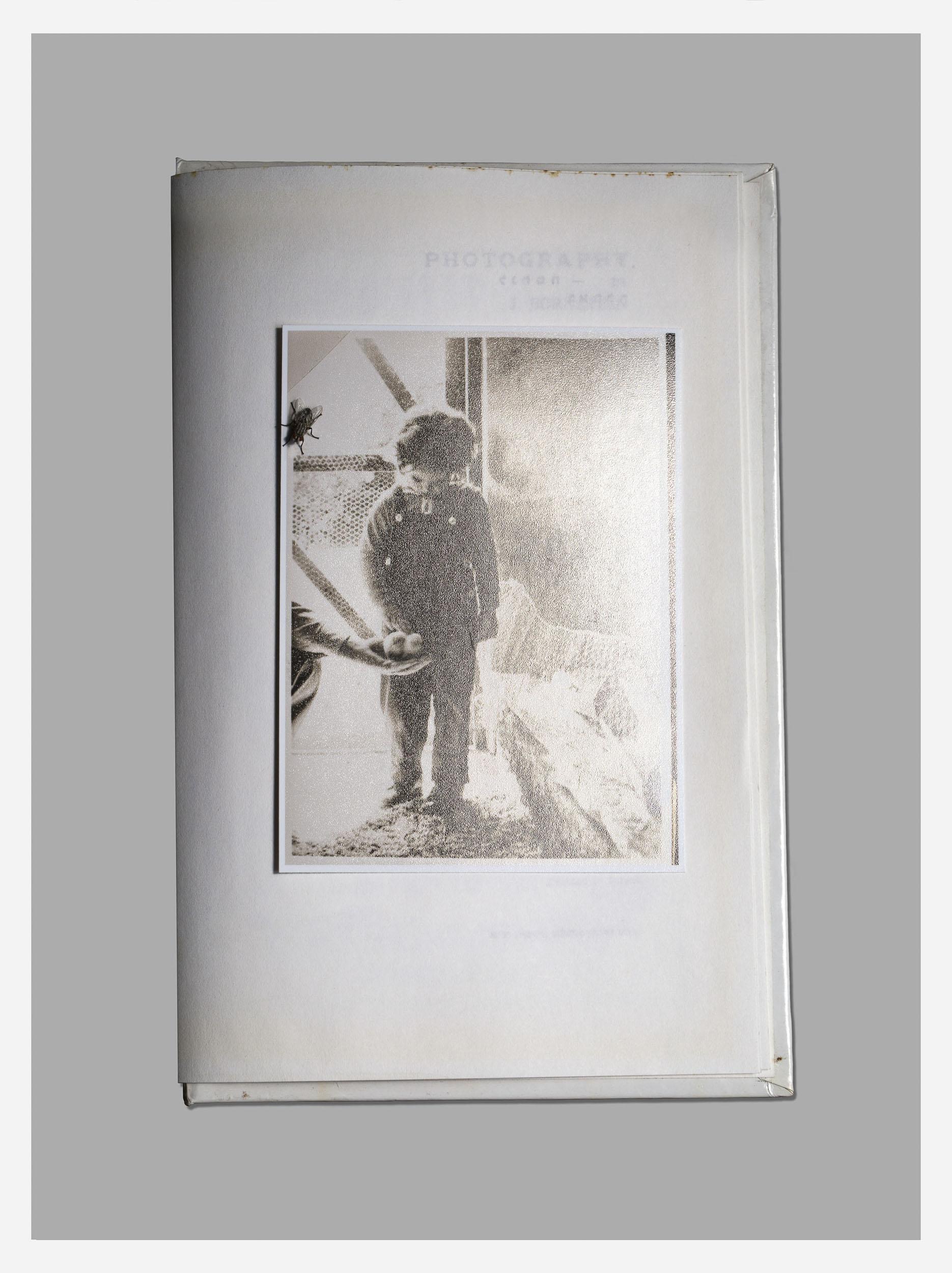 Mom Fly, 27.5*20.4 inch, Archival Inkjet Print