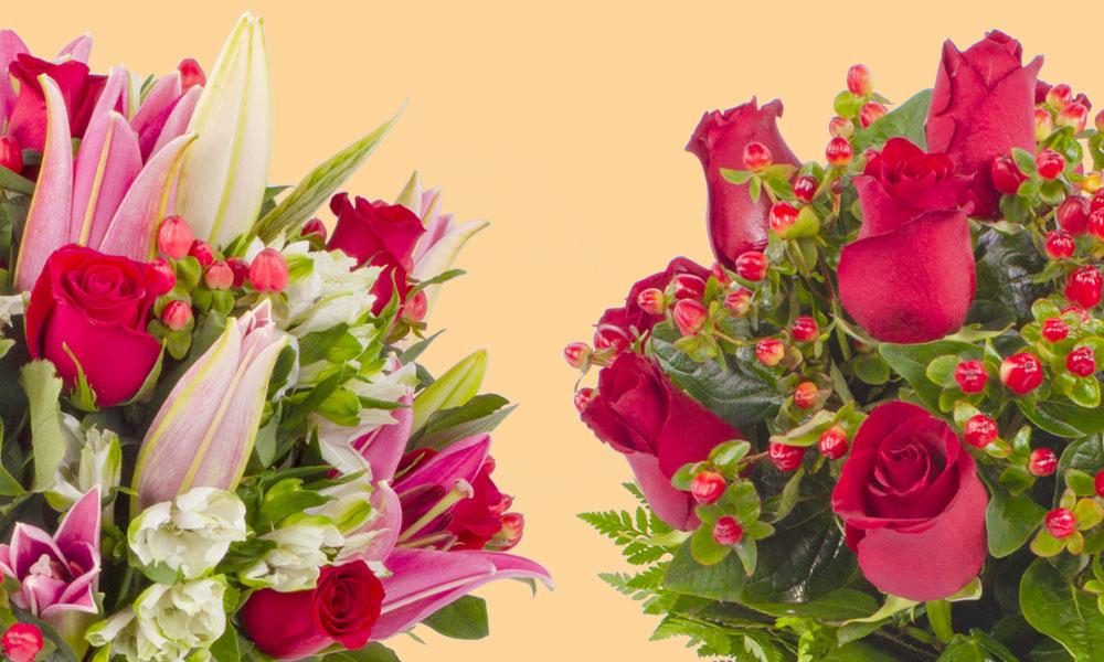 Flores y sus significados: ideales para regalos San Valentín