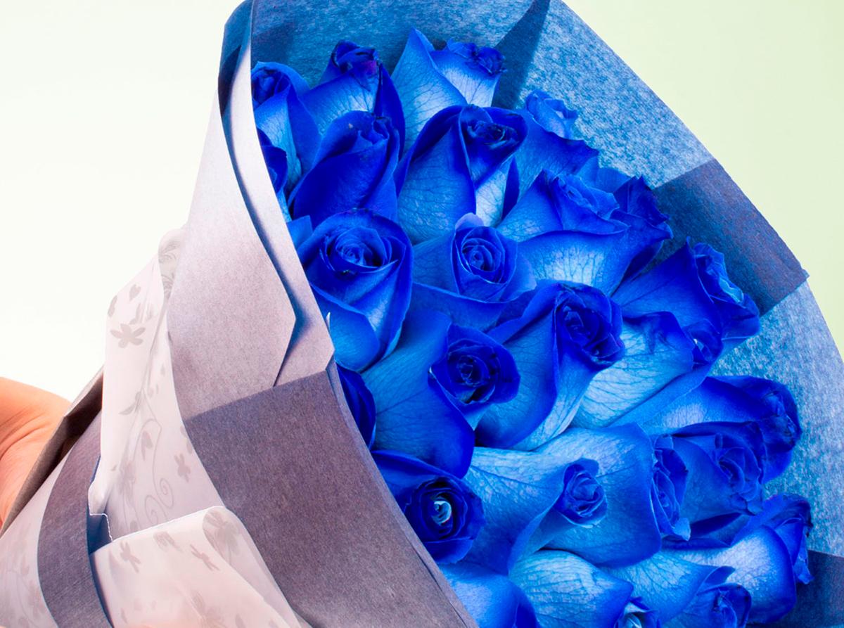 Descubre el significado de las rosas azules