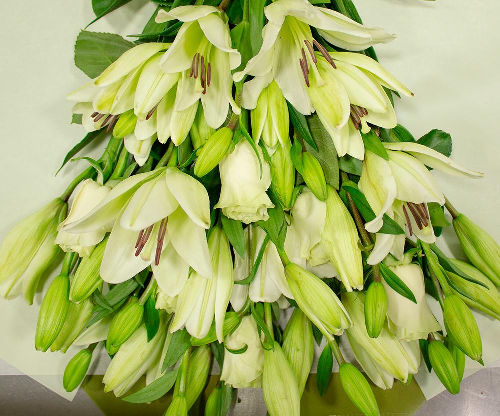 Flores funerarias para honrar a quien ya no está