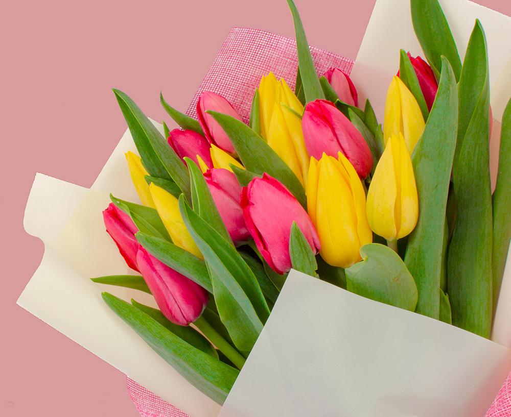 ¿Por qué regalar un ramo de tulipanes?