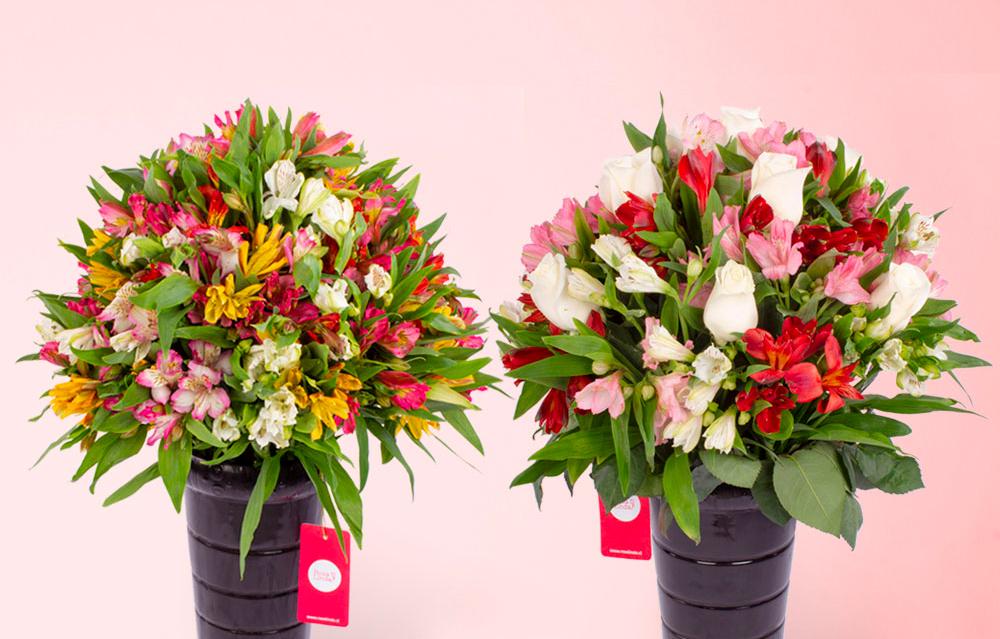 Razones para comprar arreglos florales con Astromelias