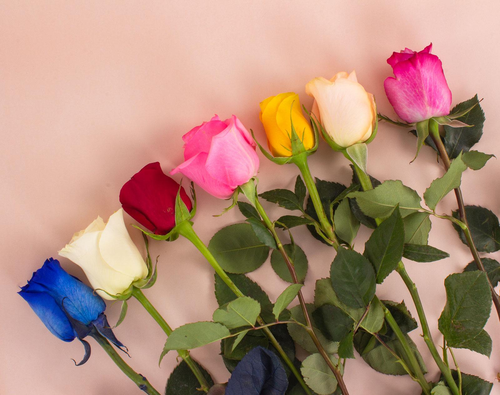 Conoce los cuidados básicos de un arreglo floral